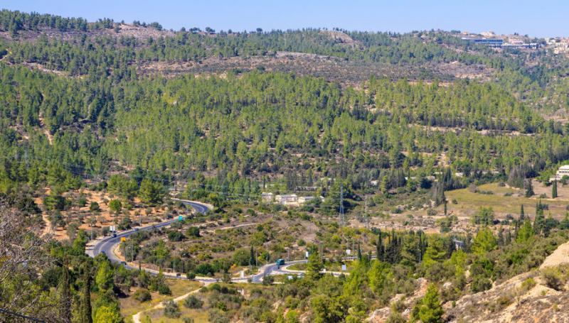 שמורת יער ריחן ואזור עירון