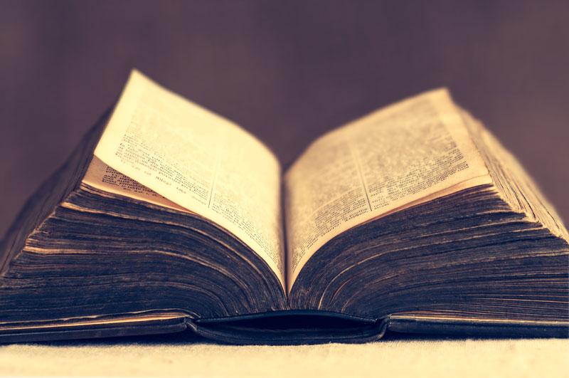 24 מפגשים על 24 ספרים