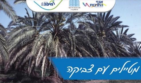 הרצאה: הצומח במורשת ישראל